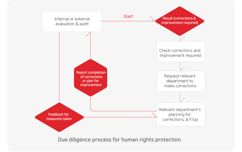 Due diligence process for human rights protection/